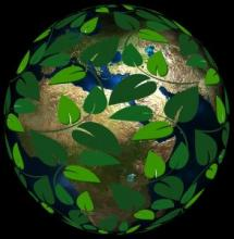 Image of Earth surrounded by leaves